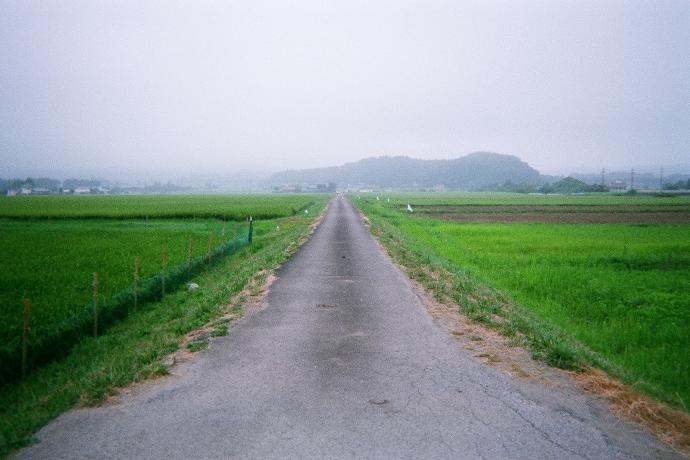 saito_3